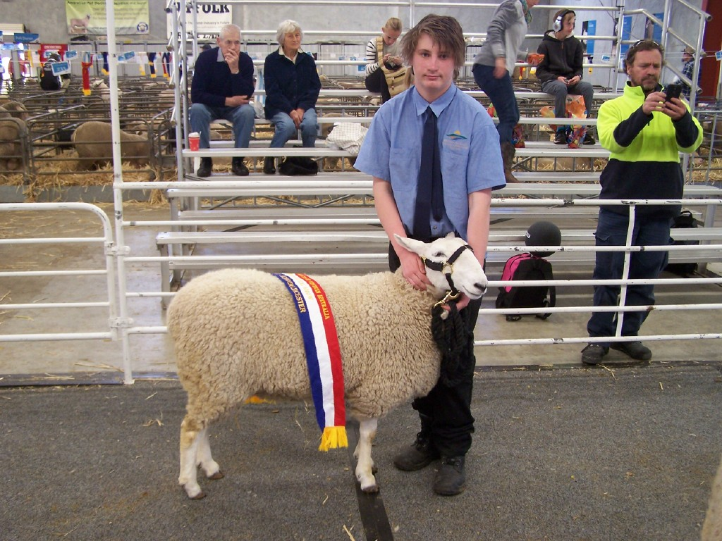 Dylan Molloy with sheep