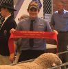 Wagin Woolorama